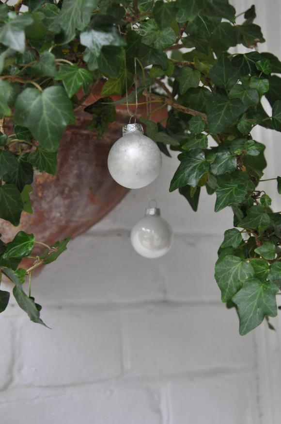 baubles on ivy