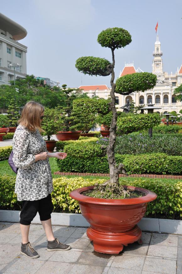 vietnam topiary