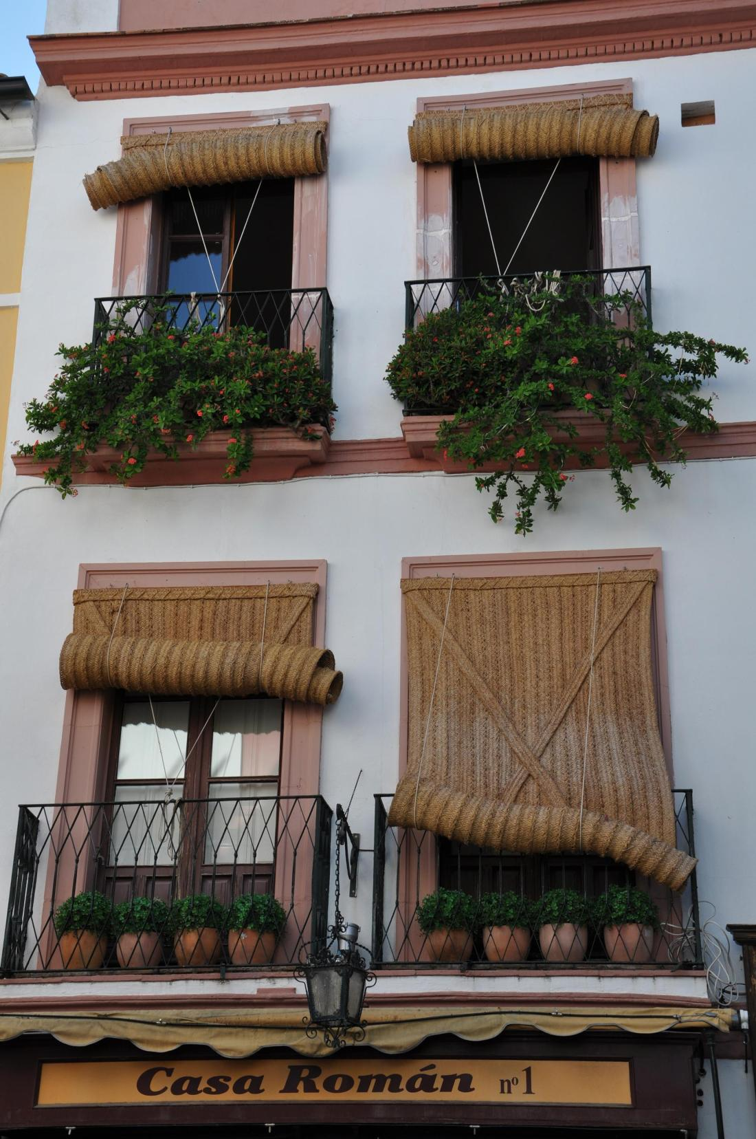 seville fill it with pots