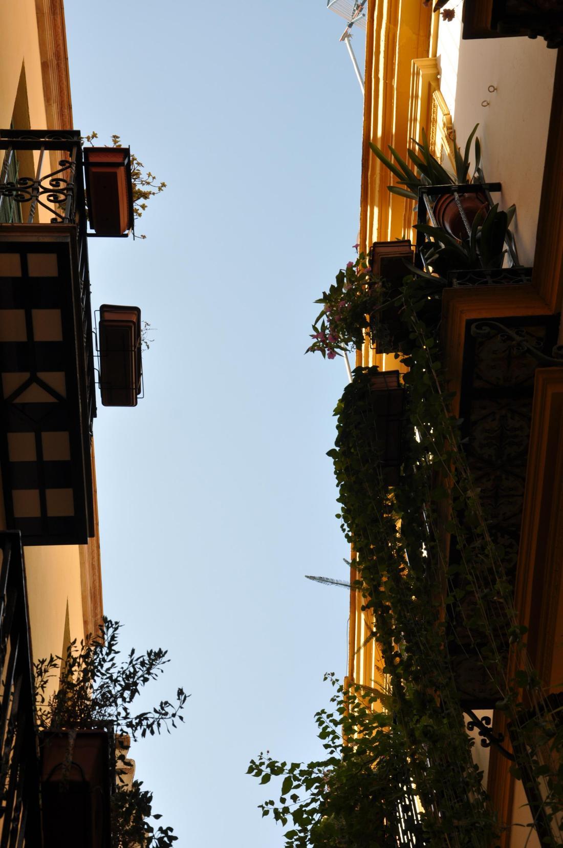 seville have a balcony fill it up2