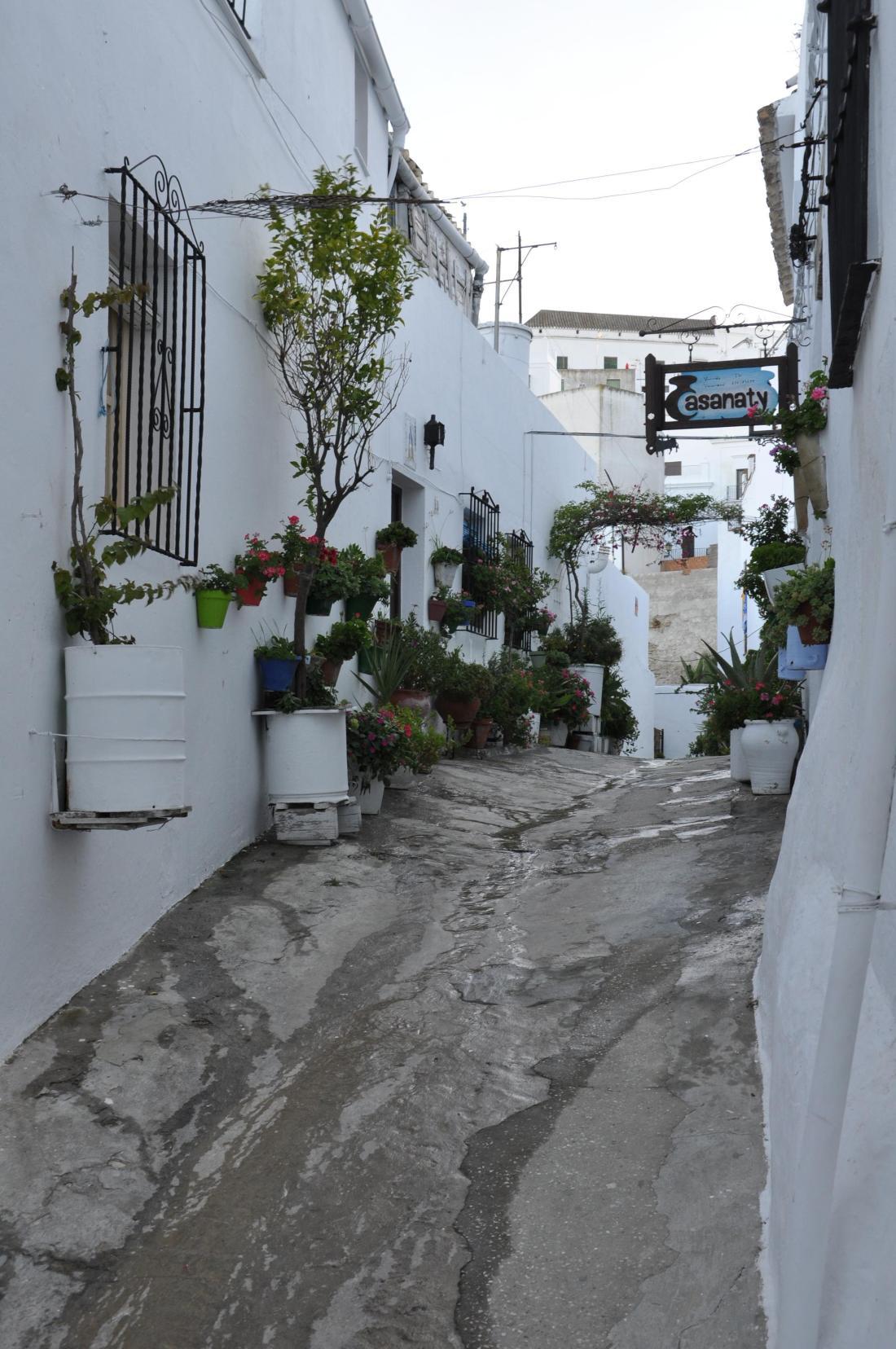 vejer blooming street