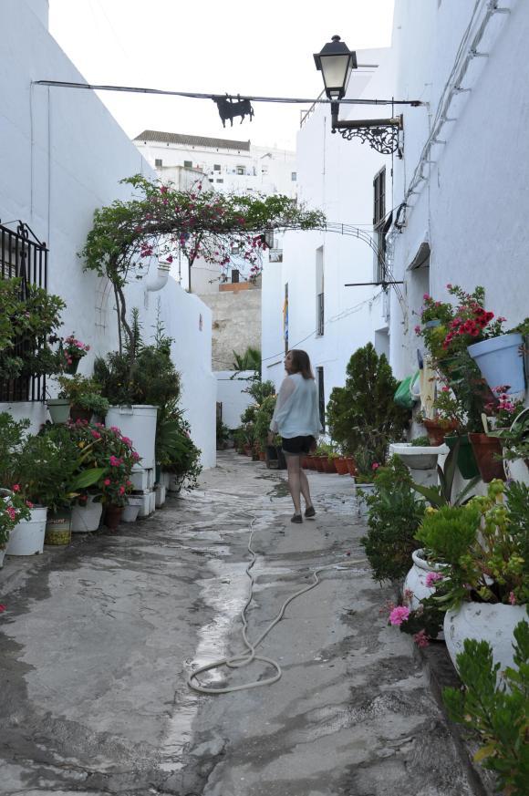 vejer blooming street2