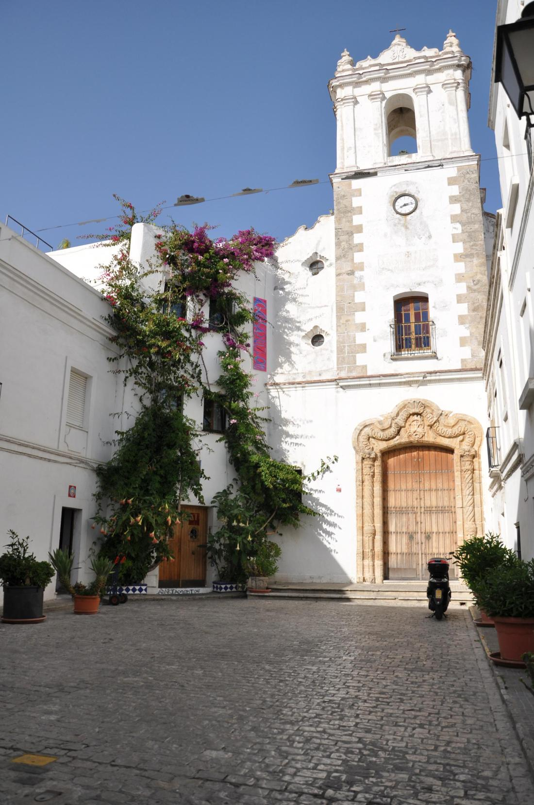 vejer let it all hang out