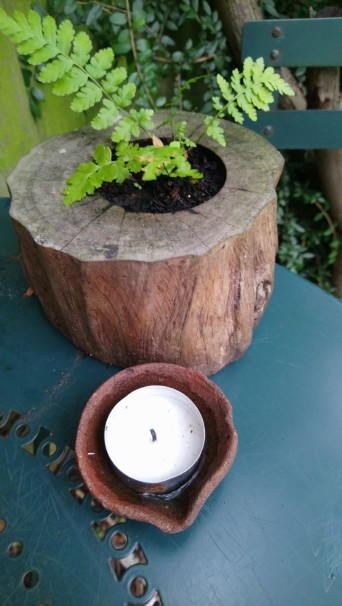teenyblooming fern and candle
